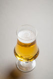 Light beer on gray Stock Photos