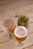 Light beer and ingredients royalty free stock images