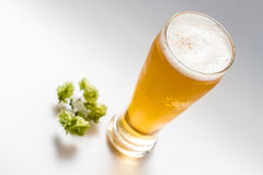 Light beer isolated Stock Photo
