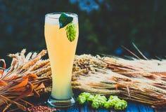 Light beer, malt, hops, barley ears on the table. Light beer - not filtered , malt, hops, barley ears on the table, alcohol, blue tone Stock Photo