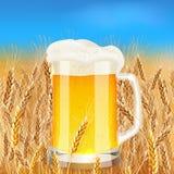 Light Beer Mug On Sunny Summer Field Stock Photos