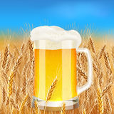 Light beer mug on sunny summer field Stock Photos