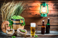Light beer in a pint taste in the cellar Royalty Free Stock Image