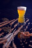 A light beer with wheat and hops royalty free stock images