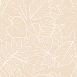 Light beige background with outline hand drawn autumn leaves. Vector fall seamless pattern. Design concept for fabric, textile print, wrapping paper or web Royalty Free Stock Photo