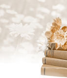 LIght beige background. Peony on the books. Grunge background Royalty Free Stock Photos