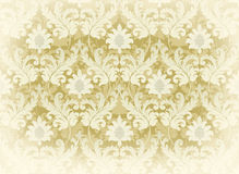 Light beige renaissance background Royalty Free Stock Image