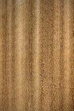 Light beige wood Stock Photos
