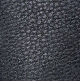 Light black skin, with figures of irregular shape and veins. Leather texture. Closeup Royalty Free Stock Photos