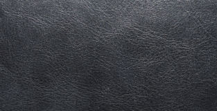Light black texture of natural skin, with veins. Leather texture. Сloseup Stock Images