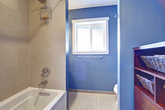 Light blue bathroom interior Stock Photo