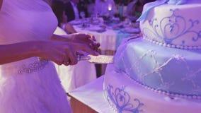 Light blue cake stock footage