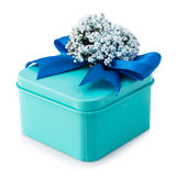 Light blue gift box. With blue ribbon and white flowers isolated on white background. The file includes a clipping path, so it`s easy to work Stock Photos