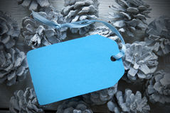 Light Blue Label On Fir Cones With Copy Space Frame Royalty Free Stock Image