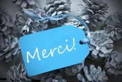 Light Blue Label On Fir Cones Merci Means Thank You Stock Photos