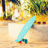 Light blue longboard penny board with multicolored wheels ready Royalty Free Stock Image