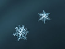 Light blue snowflakes Stock Images