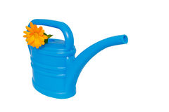 Light-blue watering pot with orange flower at its spout Stock Images