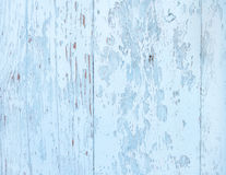Light blue wooden texture. Royalty Free Stock Images