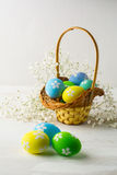 Light blue, yellow, green Easter eggs in the basket. Decorated light blue, yellow, green Easter eggs in the basket with small white baby's breath flowers on a Royalty Free Stock Photos