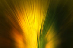 Light blur style abstract background. Light gold blur style abstract background Royalty Free Stock Photography