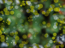 Light bokeh circles. Abstract of light bokeh circles on green of natural background Stock Images
