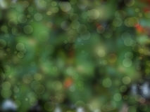 Light bokeh circles. Abstract of light bokeh circles on green of natural background Stock Photography