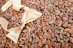 Light bow  are on cocoa beans Royalty Free Stock Photography