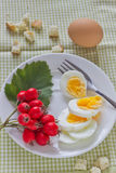 A light breakfast. Of boiled eggs on the table Royalty Free Stock Image
