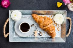 Fresh Croissant, Cup of Coffee and Ranunculus Flowers. Breakfast. Light Breakfast from fresh Croissant and Cup of Coffee on the grey tray, Ranunculus Flowers Royalty Free Stock Images