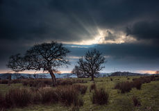 Light Breaking Cloud over Pasture. Crepuscular rays of light breaking through clouds above a grazing field on a farm in Tonyrefail, Rhondda, Wales Stock Images