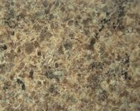Light-brown granite with white and black impregnation. stock images