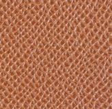 Light brown leather texture Royalty Free Stock Photos