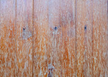Light Brown Old Plank Wood Wall Texture with Natural Pattern Bac. Kground Stock Images