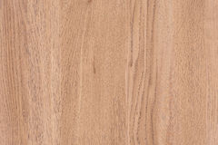 Light Brown Wood Texture Background with Copyspace Stock Photos