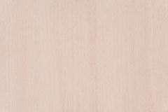 Light Brown Wood Texture Background with Copyspace Royalty Free Stock Image