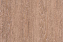 Light Brown Wood Texture Background with Copyspace Stock Image