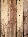 Light brown wooden plank as a background. Light brown wooden plank texture wall background Royalty Free Stock Image