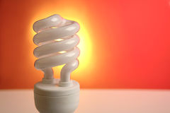 Light bulb Royalty Free Stock Photo