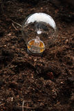 Light bulb. A light bulb planted in earth like a plant royalty free stock photography