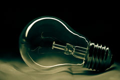 Light bulb. What represents lost idea Royalty Free Stock Photography