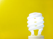 Light bulb. Stock Images