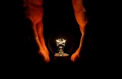 Light bulb Royalty Free Stock Image