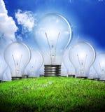 Light bulb. In a green meadow Stock Photos