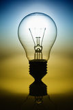 Light Bulb 2 Color Tone Stock Image