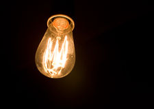 Light bulb. A low wattage filament bulb Royalty Free Stock Photo