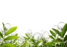 Light bulb Alternative energy concept Stock Images