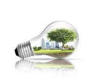 Light bulb Alternative energy concept Stock Photos
