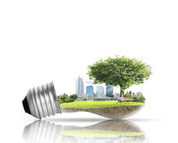 Light bulb Alternative energy concept Royalty Free Stock Photos