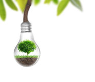 Light bulb Alternative energy concept Stock Photos